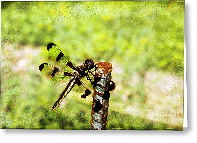 Best Sellers -  - Eating Entomology Greeting Cards - Dragonfly Eating Breakfast Greeting Card by Andee Design