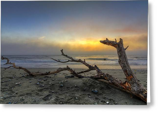 Foggy Beach Greeting Cards - Dragons Fire Greeting Card by Debra and Dave Vanderlaan