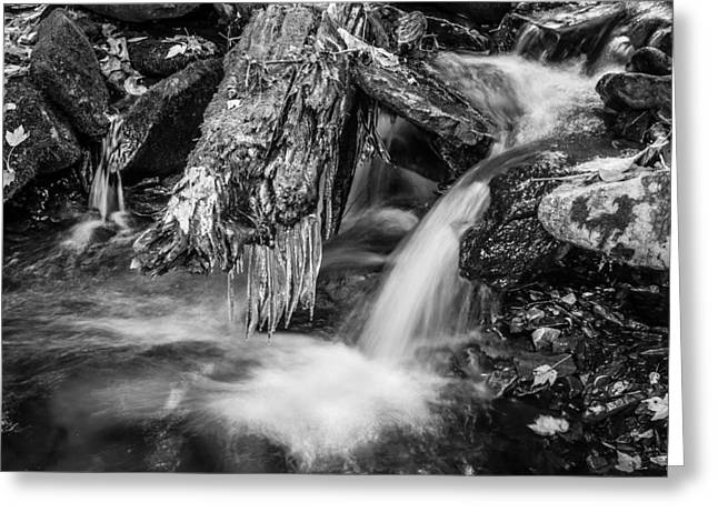 Tree Roots Greeting Cards - Dragons Teeth Icicles Waterfall Great Smoky Mountains Painted BW    Greeting Card by Rich Franco