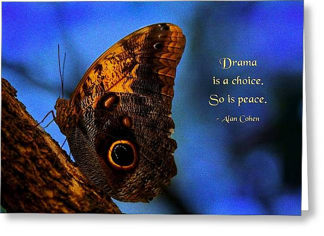 Conscious Decision Greeting Cards - Drama Is a Choice Greeting Card by Mike Flynn