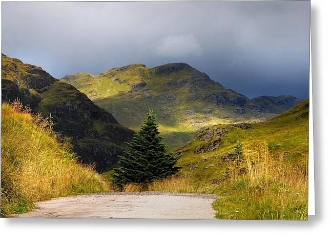 Beautiful Scenery Greeting Cards - Dramatic Light. Rest and Be Thankful. Scotland Greeting Card by Jenny Rainbow