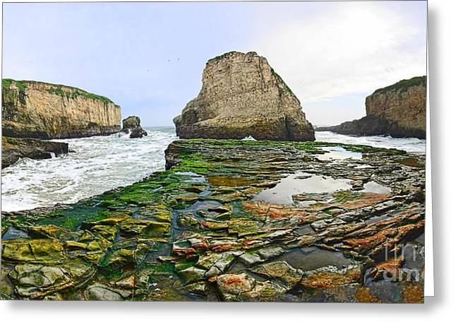 Sharks Cove Greeting Cards - Dramatic panoramic view of Shark Fin Cove Greeting Card by Jamie Pham