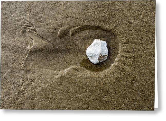 Sand Patterns Greeting Cards - Drawings in the sand - 10 Greeting Card by Michael Goyberg
