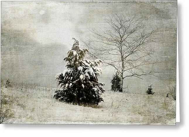 Winter Digital Photo Scene Greeting Cards - Dread of Winter Greeting Card by Julie Palencia