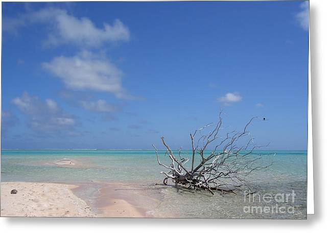 Dream Scape Greeting Cards - Dream Atoll  Greeting Card by Jola Martysz