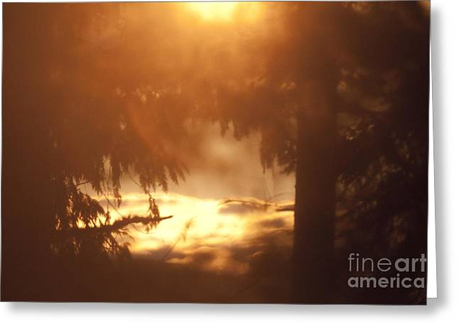 British Columbia Greeting Cards - Dream bay Greeting Card by Graham Foulkes
