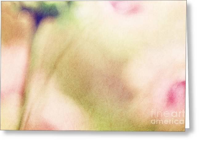 Natalie Kinnear Greeting Cards - Dream Flower Abstract 2 of 2 Greeting Card by Natalie Kinnear