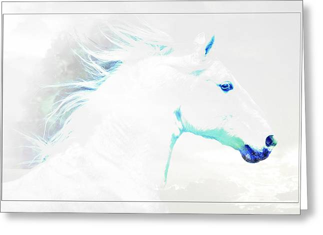 Vale Greeting Cards - Dream Horse D7775 Greeting Card by Wes and Dotty Weber