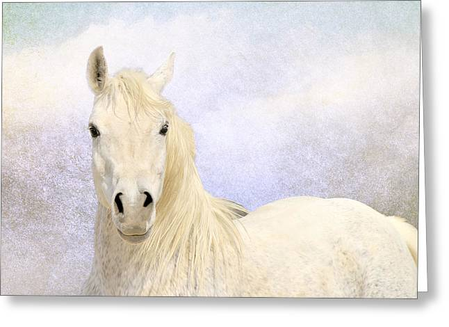 Square Format Greeting Cards - Dream Horse Greeting Card by Karen Slagle