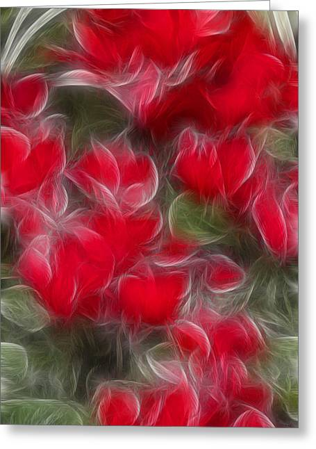 Tim Bischoff Greeting Cards - Dream Red 5232 Greeting Card by Timothy Bischoff