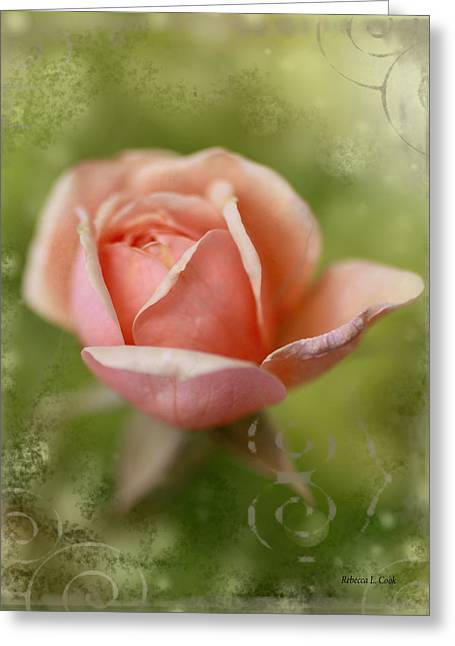 Green Day Greeting Cards - Dream Rose Greeting Card by Bellesouth Studio