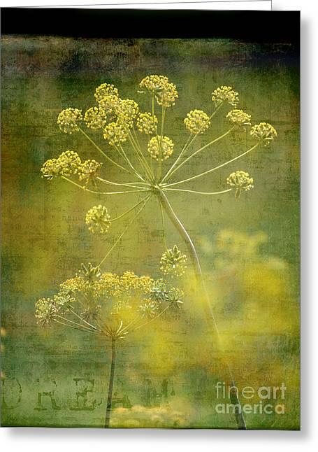 Interior Still Life Greeting Cards - Dream Greeting Card by Sharon Elliott