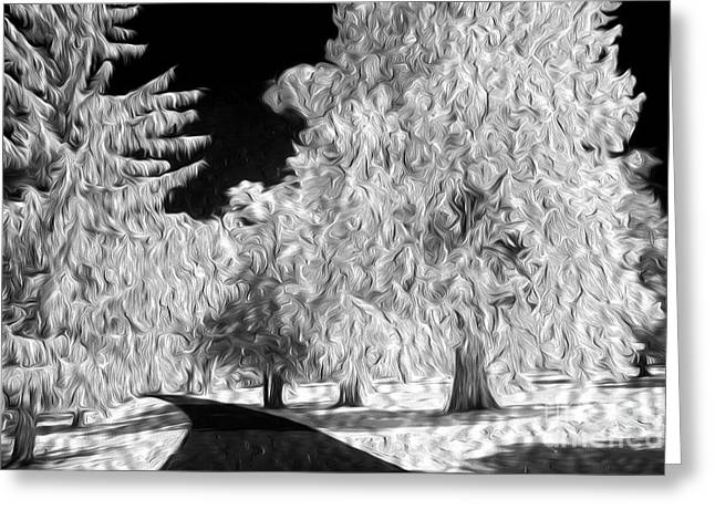 Paint Effect Greeting Cards - Dream Trees Greeting Card by Paul W Faust -  Impressions of Light