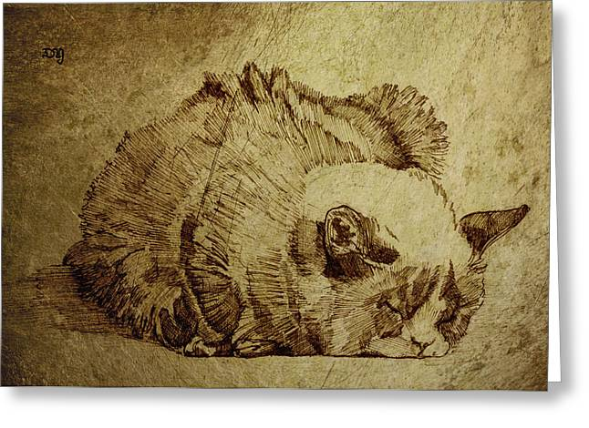 Moggy Greeting Cards - Dreaming Cat Greeting Card by Daniel Yakubovich