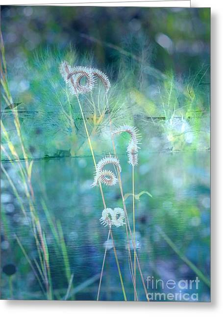 Carol Groenen Abstracts Greeting Cards - Dreaming in Blue Greeting Card by Carol Groenen