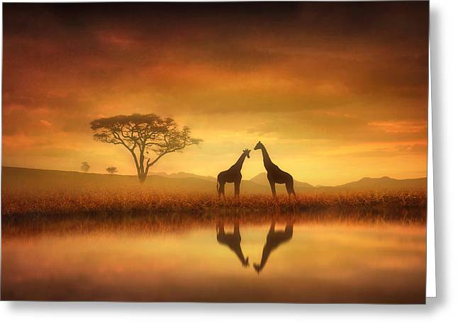Dreaming Of Africa Greeting Card by Jennifer Woodward