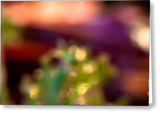Patrician Greeting Cards - Dreaming of Dinner Panorama Greeting Card by Patricia Bainter
