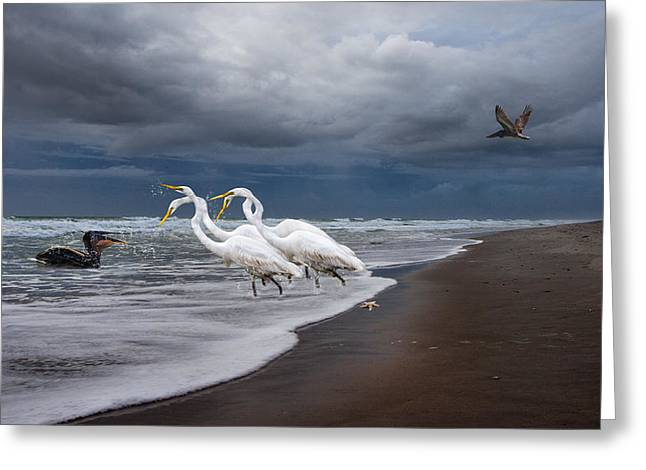 Fantasy Creatures Greeting Cards - Dreaming of Egrets by the Sea II Greeting Card by Betsy A  Cutler
