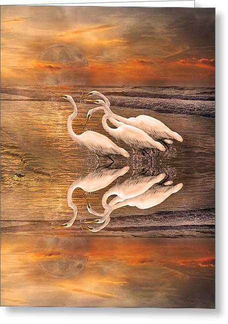 Reflecting Water Digital Art Greeting Cards - Dreaming of Egrets by the Sea Reflection Greeting Card by Betsy A  Cutler
