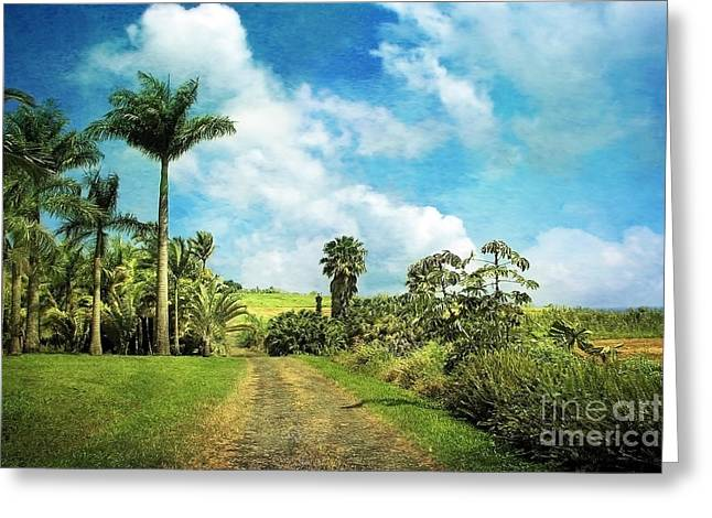 Hilo Greeting Cards - Dreaming of Hilo Greeting Card by Ellen Cotton