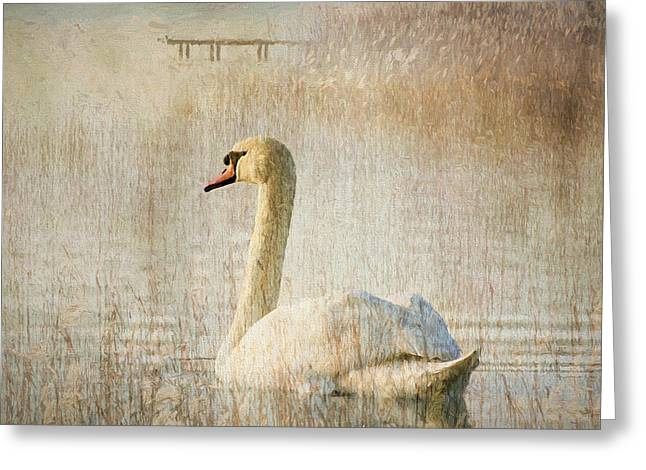 Waterscape Mixed Media Greeting Cards - Songs Of A Swan Greeting Card by Georgiana Romanovna