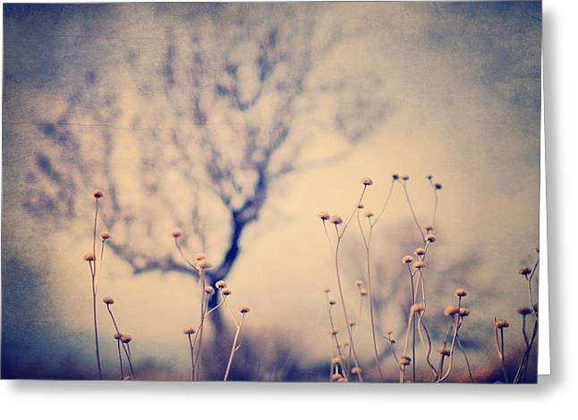 Granada Greeting Cards - Dreaming tree. Vintage Greeting Card by Guido Montanes Castillo