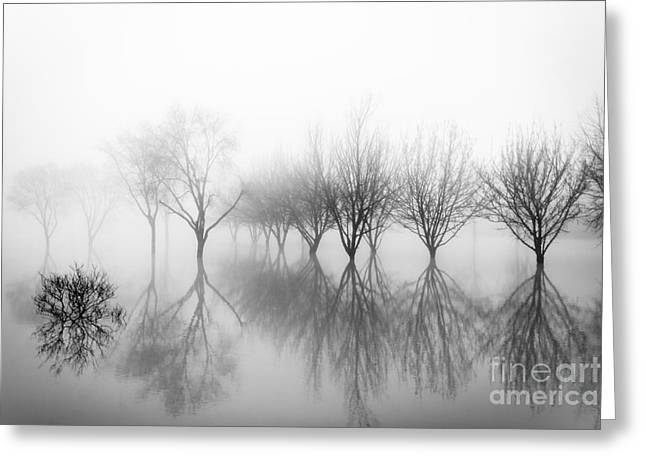 Nebbia Greeting Cards - Dreamland01 Greeting Card by Stefano Bertolucci