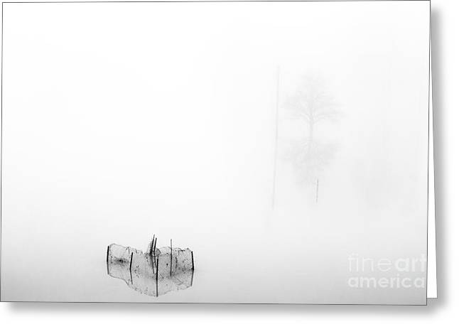 Nebbia Greeting Cards - Dreamland07 Greeting Card by Stefano Bertolucci