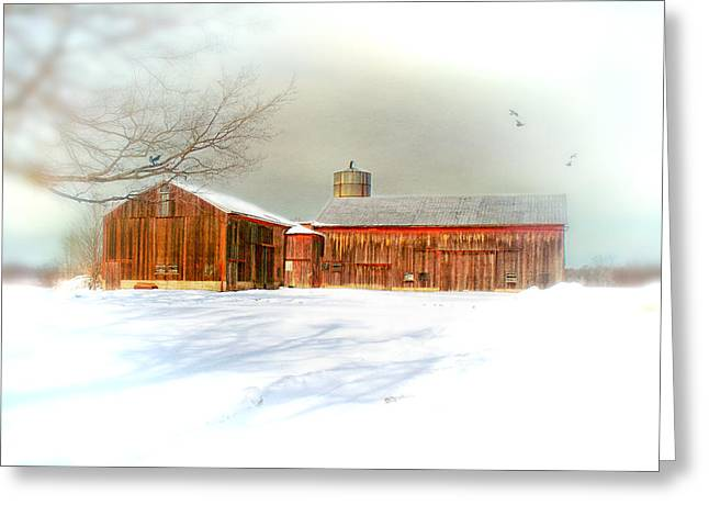 Dreams of a White Christmas Greeting Card by Mary Timman