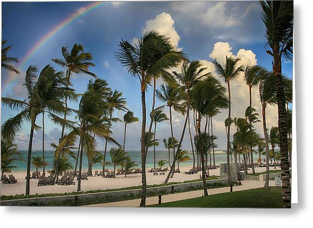Caribbean Island Greeting Cards - Dreams That You Dare to Dream Greeting Card by Laurie Search