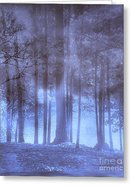Dream Scape Greeting Cards - Dreamy Forest Greeting Card by Scott Hervieux
