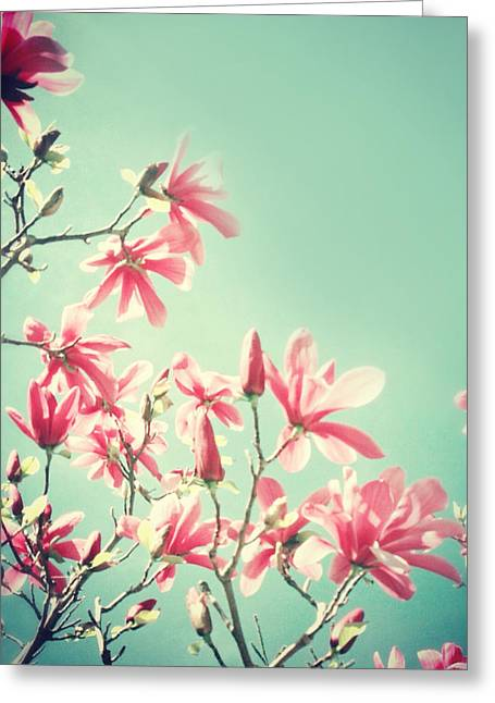 Modern Photographs Greeting Cards - Dreamy Magnolia Greeting Card by Elle Moss