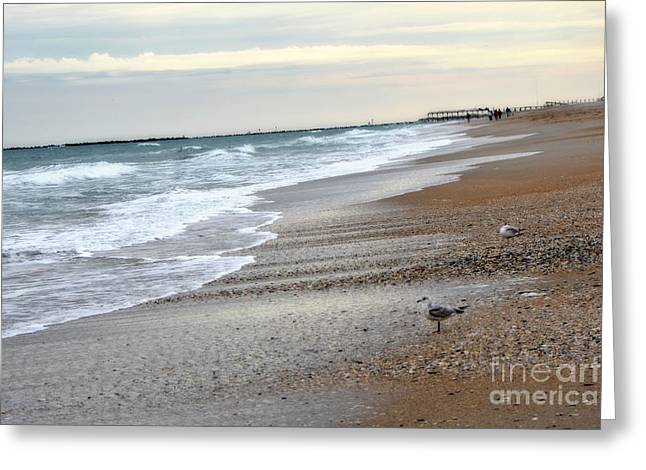 Dreamy Ocean Beach North Carolina Coastal Beach  Greeting Card by Kathy Fornal