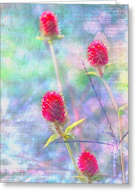 Dreamy Red Spiky Flowers Greeting Card by Karen Stephenson