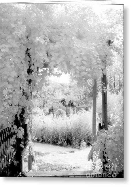 Surreal Infrared Dreamy Landscape Greeting Cards - Dreamy Surreal Black White Infrared Arbor Greeting Card by Kathy Fornal