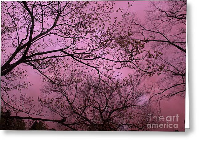 Dreamy Surreal Fantasy Dark Pink Nature Trees Dark Pink Sky  Greeting Card by Kathy Fornal