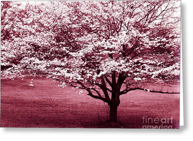 Fantasy Tree Photographs Greeting Cards - Dreamy Surreal Pink South Carolina Trees  Greeting Card by Kathy Fornal