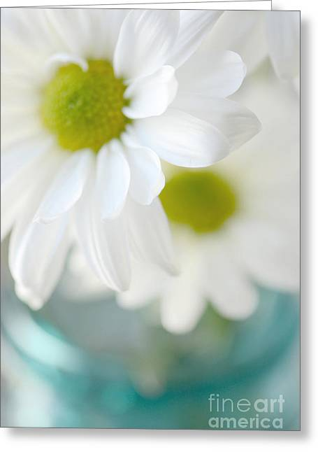 Dreamy White Daisies Aqua Mint Ball Jar Photography - Ethereal Dreamy Shabby Chic White Daisies  Greeting Card by Kathy Fornal