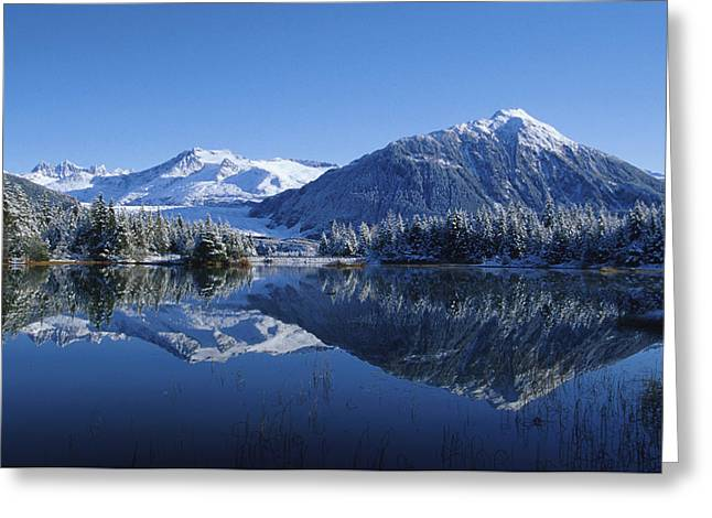 Dredge Greeting Cards - Dredge Lakes Mendenhall Valley Winter Greeting Card by John Hyde