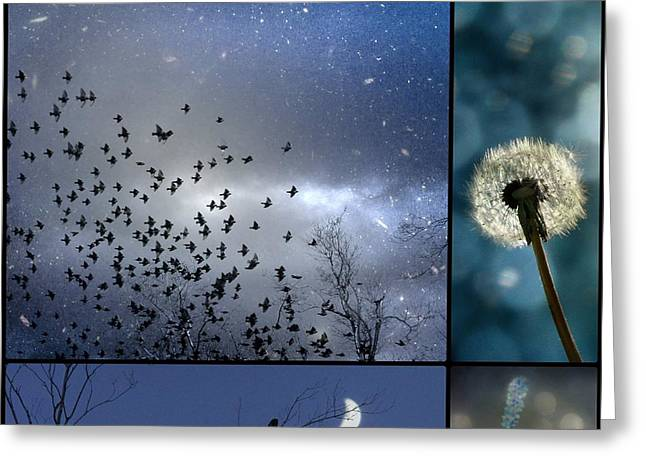 Photos Of Birds Greeting Cards - Drempt In Blue Greeting Card by Gothicolors Donna Snyder