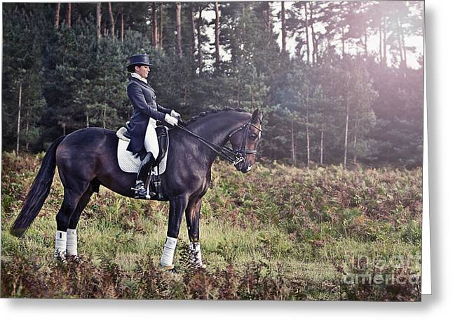 Dressage Photographs Greeting Cards - Dressage Horse and Rider Greeting Card by Justin Paget