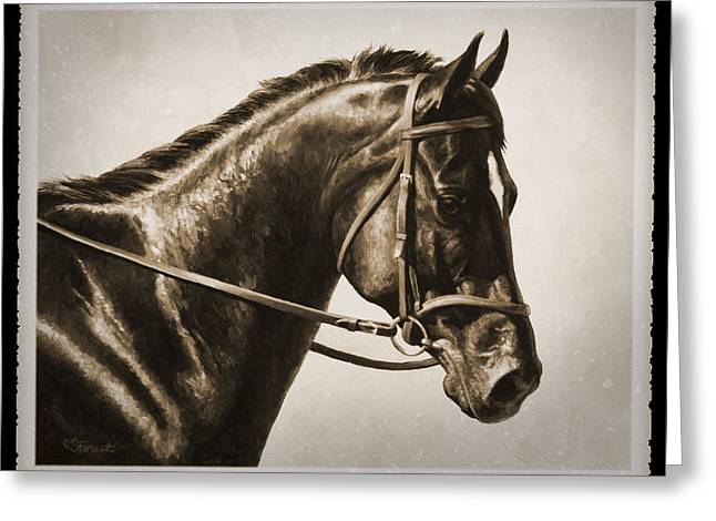 Black Horses Greeting Cards - Dressage Horse Old Photo FX Greeting Card by Crista Forest