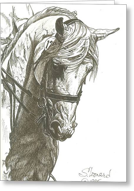 Dressage Drawings Greeting Cards - Dressage Horse Greeting Card by Suzanne Leonard