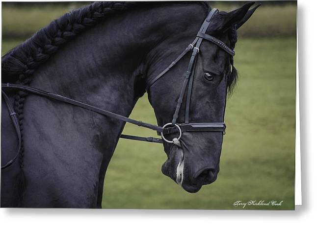 Dressage Photographs Greeting Cards - Dressage One Greeting Card by Terry Kirkland Cook