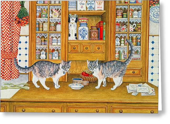 Dresser Cats Greeting Card by Ditz