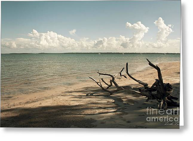 Sandy Beaches Greeting Cards - Drift Away Greeting Card by Linda Lees