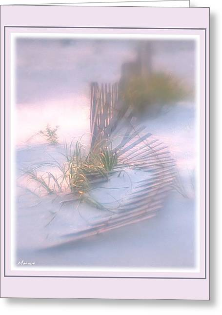 Matting Greeting Cards - Drift Fence Greeting Card by Barry Monaco