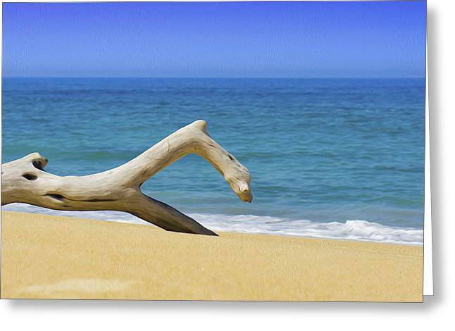 Driftwood Beach Greeting Cards - Driftwood Greeting Card by Aged Pixel