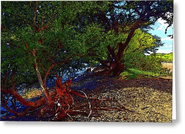 Unwind Digital Greeting Cards - Drift Wood Beach - Cartoon Greeting Card by Robert Pierce