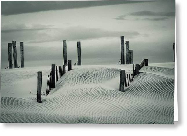 Drifting Dunes Greeting Card by Tom McGowan